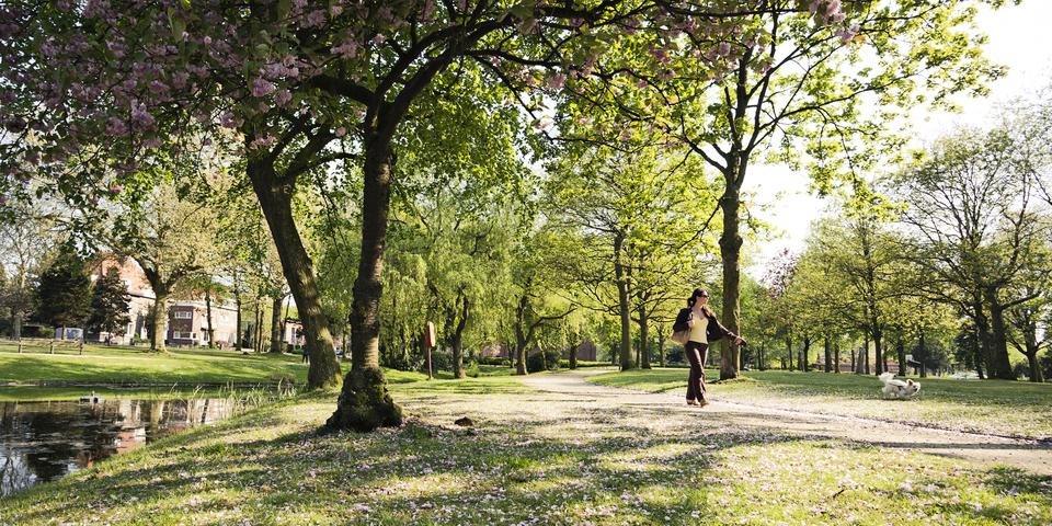 Broydenborg sluit aan bij park Sorghvliedt