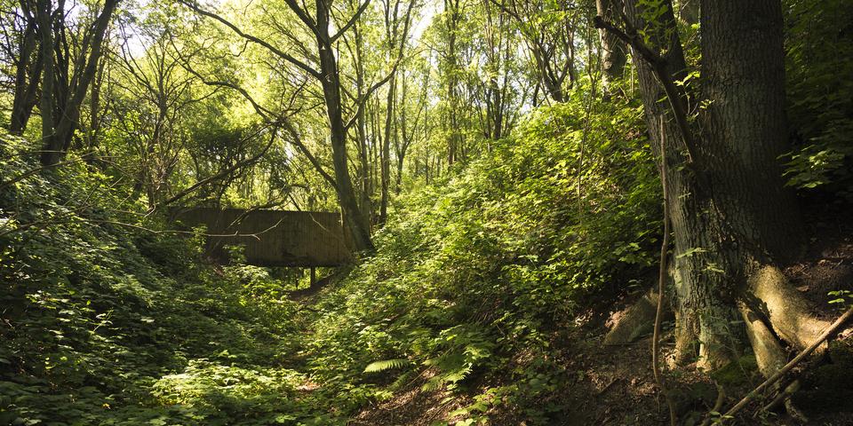 Fort VII is een beschermd monument en een erkend natuurreservaat