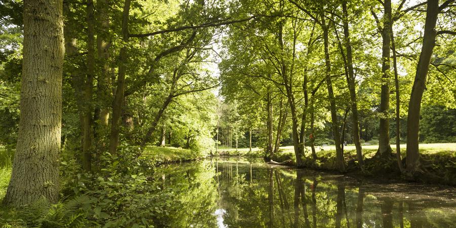 Park Vogelzang is aangelegd in typische Engelse landschapstijl