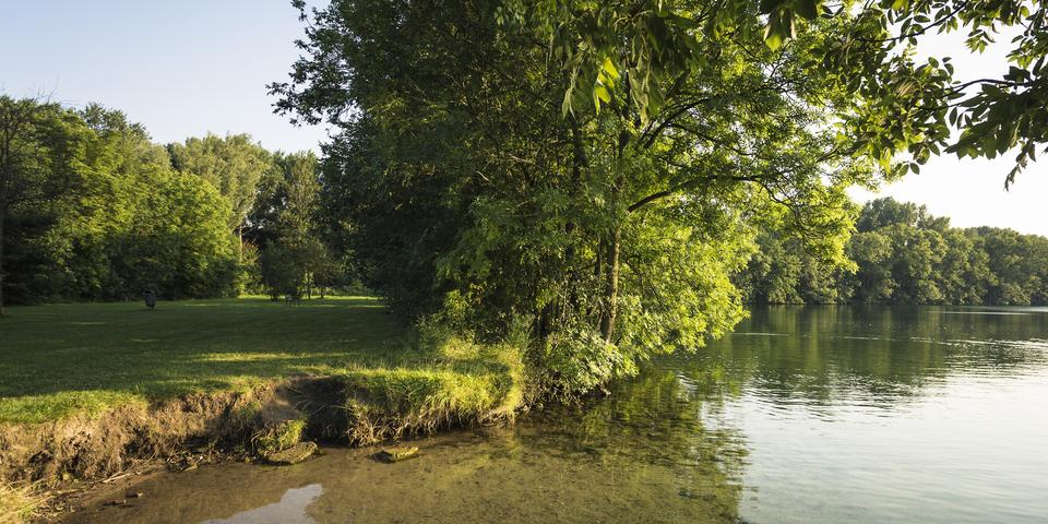 25 ha van Muisbroek bestaat uit water