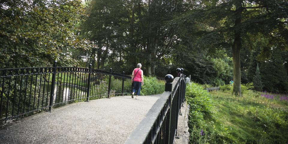 Het gemeentepark heeft een mooie vijver